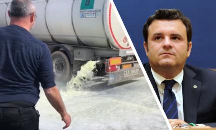Sardegna: latte di pecora in polvere da esportare in Cina. Perché non lo fa la Sicilia?