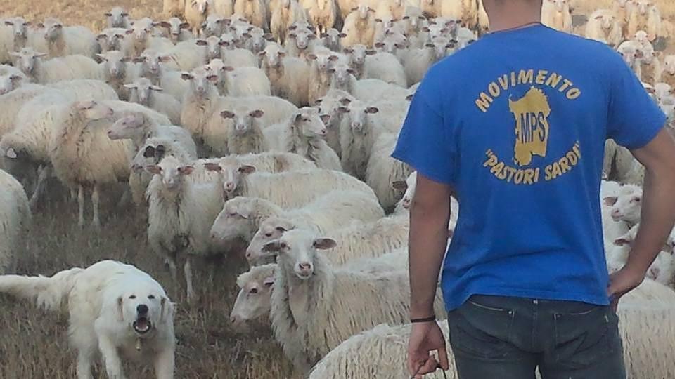 La rivolta dei pastori in Sardegna e le elezioni regionali 'militarizzate' da Salvini
