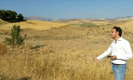"""Figuccia: """"La Regione tuteli gli agricoltori siciliani utilizzando i fondi del PSR"""""""