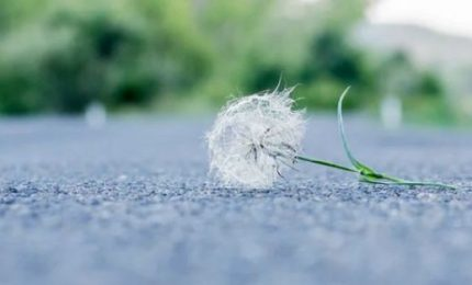 Riflettendo con John Keats sulla fragilità della vita