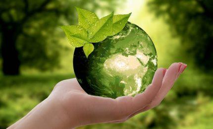 Dopo il Friday for Future: un paio di rimedi semplici per non inquinare il mondo in cui viviamo