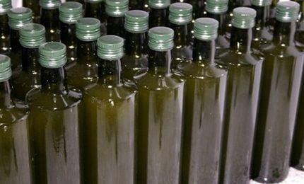 La truffa olio d'oliva in Toscana (Grosseto, Siena, Arezzo e Firenze) e a Foggia/ MATTINALE 316
