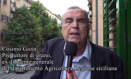 """Cosimo Gioia: """"Alle elezioni europee voterò Ignazio Corrao"""""""