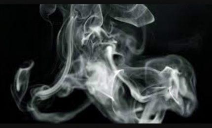 I grillini romani come Musumeci: sull'agricoltura siciliana vendono solo fumo!