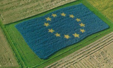 La 'ricetta' per la 'Dieta Mediterranea allargata' dalla globalizzazione e alla UE dell'euro
