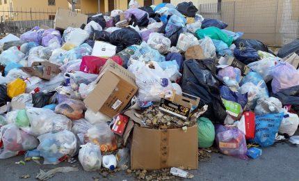 Palermo e Roma a confronto sull'immondizia tra informazione e disinformazione/ MATTINALE 246