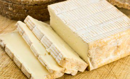 Allarme per alcuni formaggi francesi contaminati: 13 bambini ricoverati