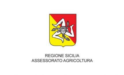 In arrivo nuovo 'bollino': il Distretto unico del cibo siciliano. Possiamo essere molto perplessi?