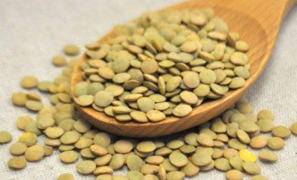 La truffa delle lenticchie 'taroccate' ci dice cosa possono fare i Siciliani per opporsi a chi gli propina cibi 'avvelenati'/ MATTINALE 285