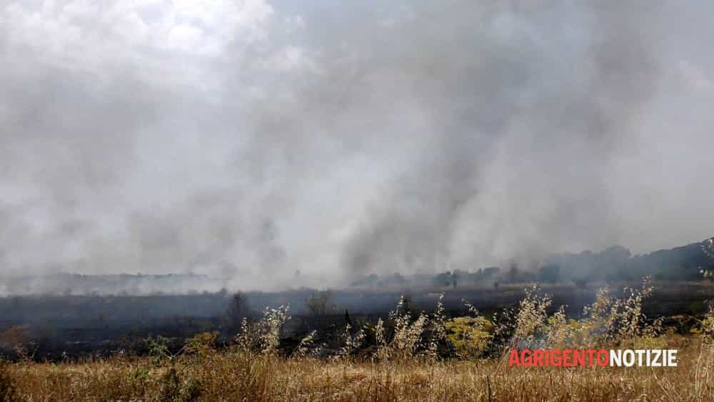 A fuoco i grani antichi della Valle dei Templi di Agrigento. Perché gli incendi nei campi di grano?