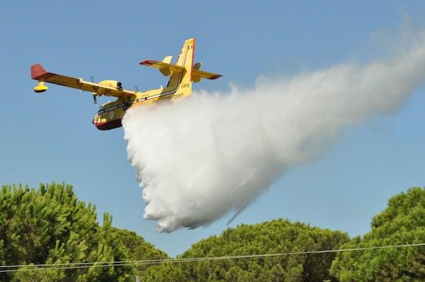 Incendi in Sicilia, i grillini chiamano in causa il Governo Musumeci