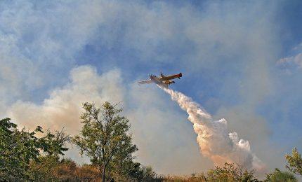 Fuoco sopra Mondello, le fiamme bruciano la Riserva naturale di Capo Gallo
