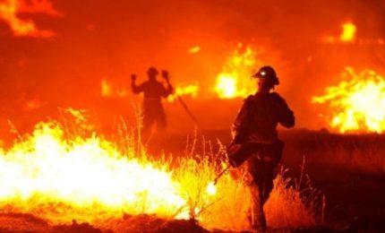 Sicilia in fiamme: però abbiamo 'risparmiato' sui Forestali. A chi fanno capo i terreni che hanno preso fuoco a Bellolampo?