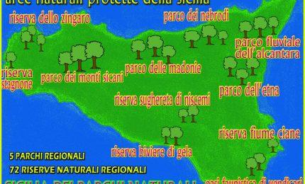 Ma dove sta scritto che la Regione deve pagare il personale delle Riserve naturali della Sicilia?