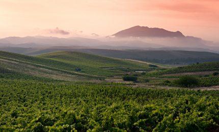 La crisi del vino sfuso siciliano: perché non provare a venderlo alla Russia di Putin?/ MATTINALE 331