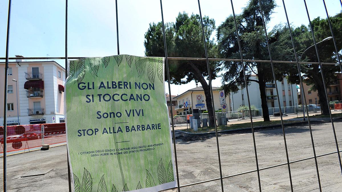 In tutta l'Italia si tagliano alberi per fare posto alle antenne della tecnologia 5G? (VIDEO)