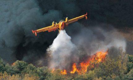 Incendi, anche in Sardegna la situazione è grave. La Sicilia non è un caso unico