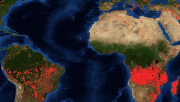 Incendi non solo in Amazzonia: in fiamme anche vaste aree dell'Africa
