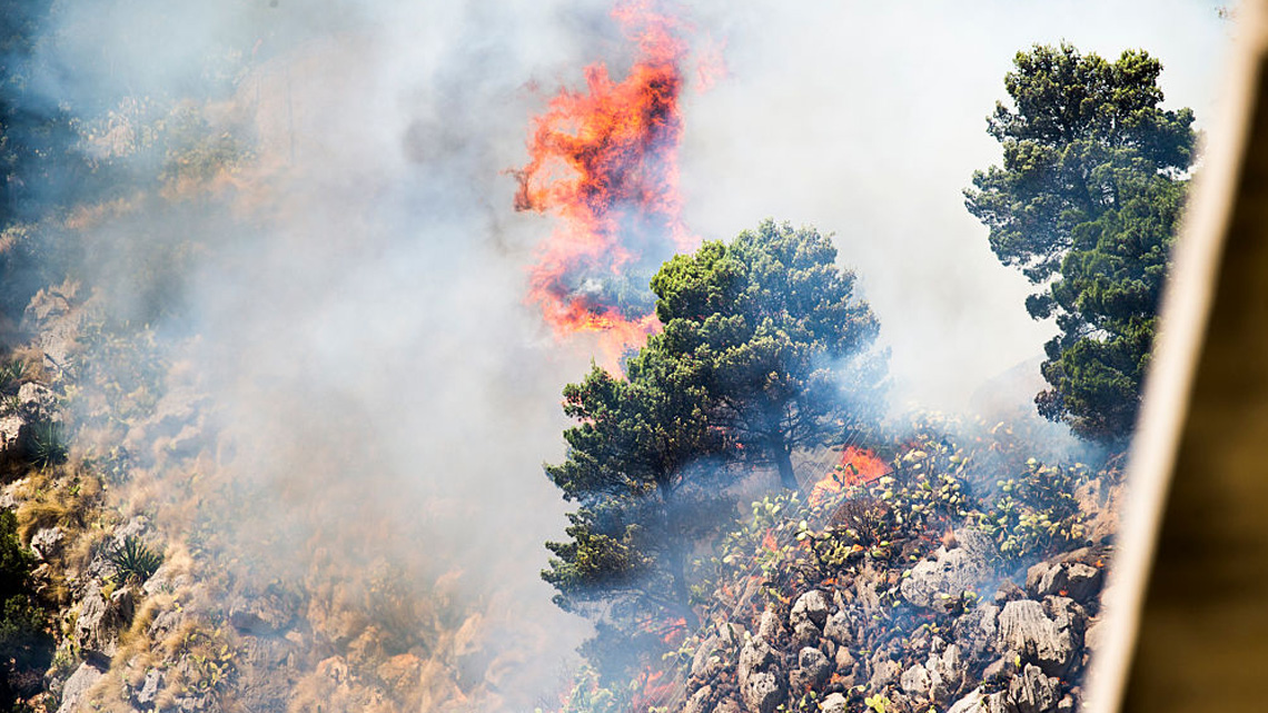 Che cosa c'è dietro gli incendi dei boschi della Sicilia?/ MATTINALE 365