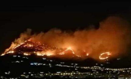 Gli incendi in Sicilia: i punti oscuri del fuoco di Ciaculli e le responsabilità del Governo regionale