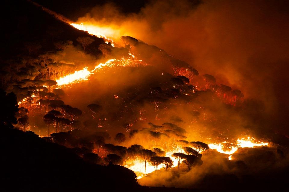 Incendi di Palermo e Monreale: Musumeci, Cordaro e il Corpo Forestale si sono 'auto-assolti'…