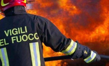 """Gli incendi di Palermo e Monreale, Pino Apprendi: """"E io vi dico che..."""""""