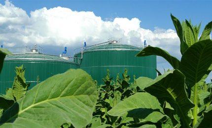 Biometano (discarica?) a Grottarossa (Cl): l'UDC di Cesa e Figuccia si è sostituita agli ambientalisti!