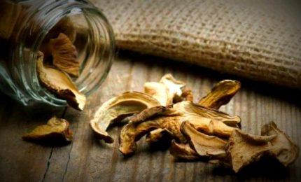 Lo sapevate che nei funghi conservati ci sono larve di insetti? Con rischi allergologici