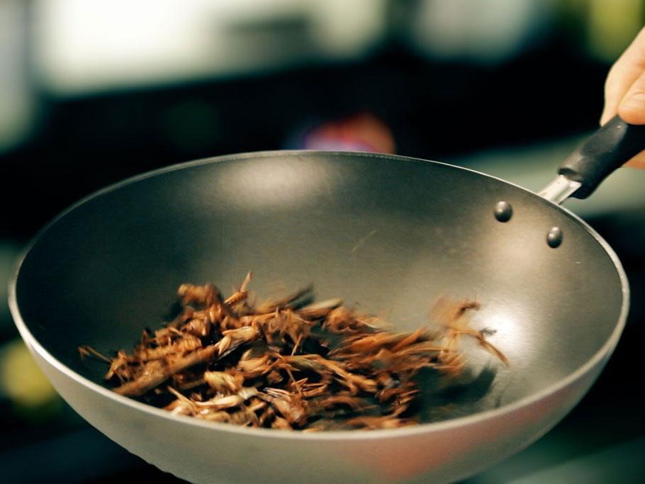Ragù di carne? Non più: ora c'è il ragù di insetti! (gastronomicamente corretto)