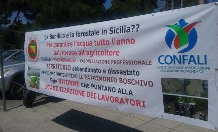 Nasce in Sicilia un nuovo sindacato per l'agricoltura e la pesca