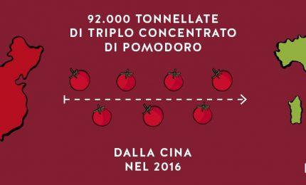 Italia leader nell'export agroalimentare? Ma che prodotti esportiamo?