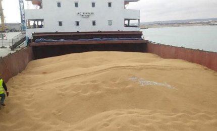 Olè: un milione di quintali di grano estero - canadese e turco - è arrivato nel porto di Bari!