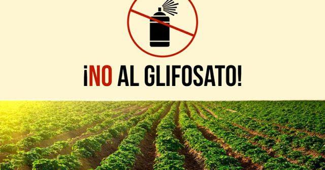 La Sicilia dice No al glifosato nel giorno in cui a Catania la Bayer promuove se stessa!