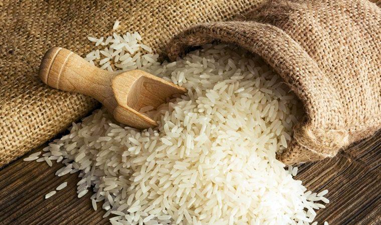 Il ritorno del riso in Sicilia tra arancine o arancini/ MATTINALE 465