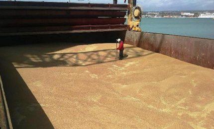 Invasione dei prodotti agricoli, Cosimo Gioia: bloccare le importazioni? Meglio i controlli e la CUN/ MATTINALE 511