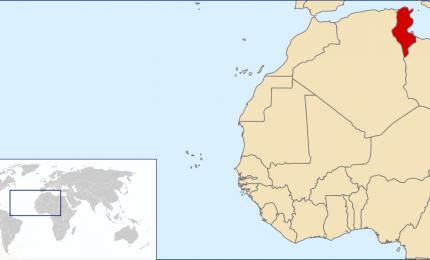 Olé: 480 tonnellate di olio d'oliva tunisino a Sciacca. Buon appetito ai nostri amici 'saccensi'...