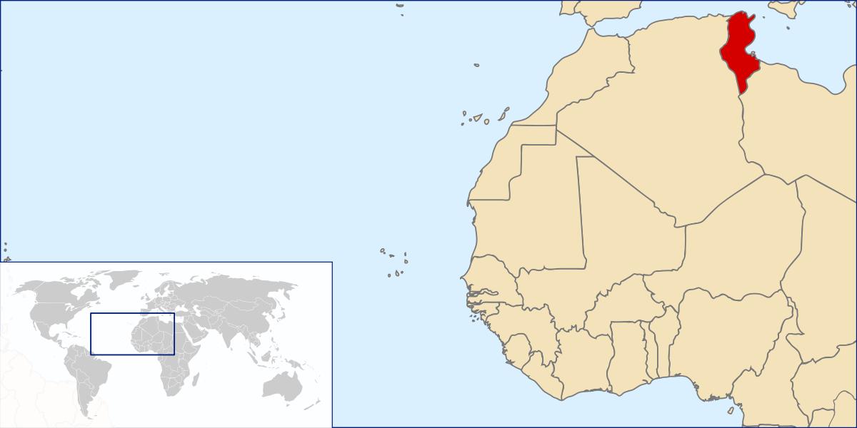 Olé: 480 tonnellate di olio d'oliva tunisino a Sciacca. Buon appetito ai nostri amici 'saccensi'…