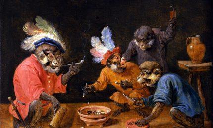 Le scimmie ubriache e giocatrici d'azzardo