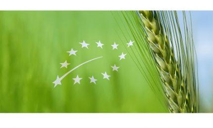 Commissione e Parlamento europei vogliono affossare l'agricoltura: si inizia con un taglio da 35 miliardi di euro