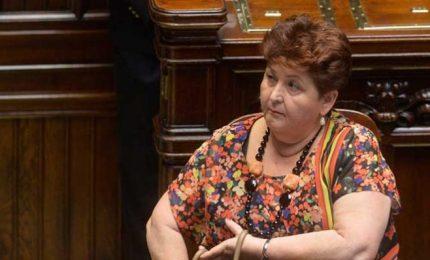 """De Bonis: """"Con la scusa del Coronavirus in Italia 2 milioni di quintali di grano con le navi senza controlli"""""""