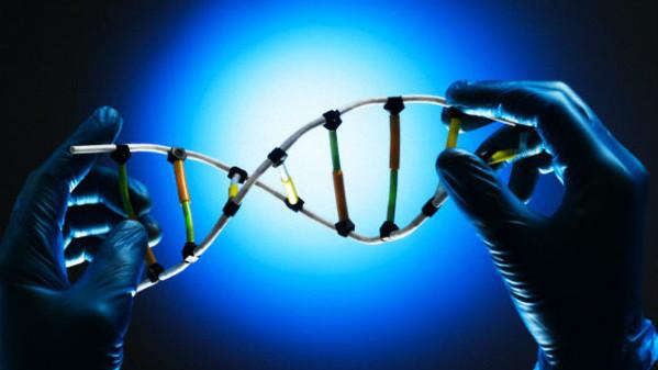 MES, niente contante, 5G e, adesso, anche il controllo dei nostri geni. Che vuole da noi il Governo Conte bis?/ MATTINALE 540
