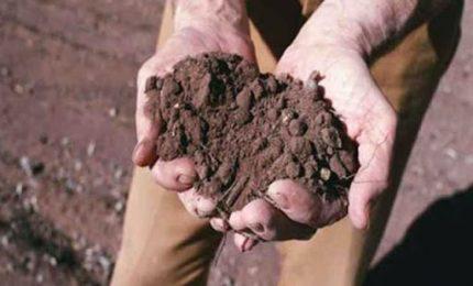 La mazzata: l'INPS chiede ad ogni agricoltore circa 6 mila euro! Complimenti ai grillini.../ MATTINALE 480