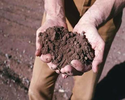 La mazzata: l'INPS chiede ad ogni agricoltore circa 6 mila euro! Complimenti ai grillini…/ MATTINALE 480