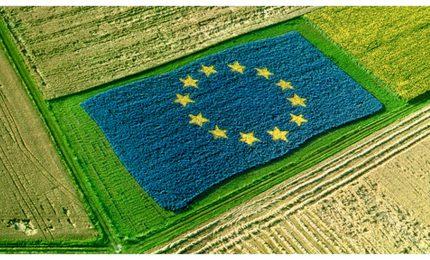 La Ue prepara il 'funerale' dell'agricoltura mediterranea. Taglio del 10% al settore e...