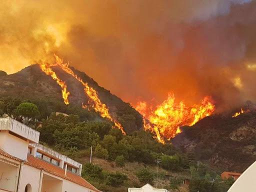 Morire a 67 anni da operaio forestale mentre va a spegnere un incendio/ MATTINALE 498