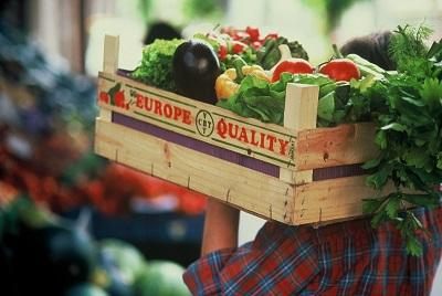 Quegli imprenditori agricoli italiani (e siciliani) che producono in Egitto, Marocco, Tunisia e Cile e che...