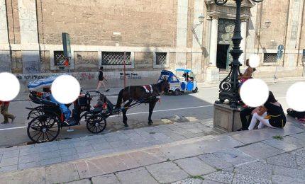 PALERMO-CITTA' 26/ Adesso anche la puzza di urina di cavalli!