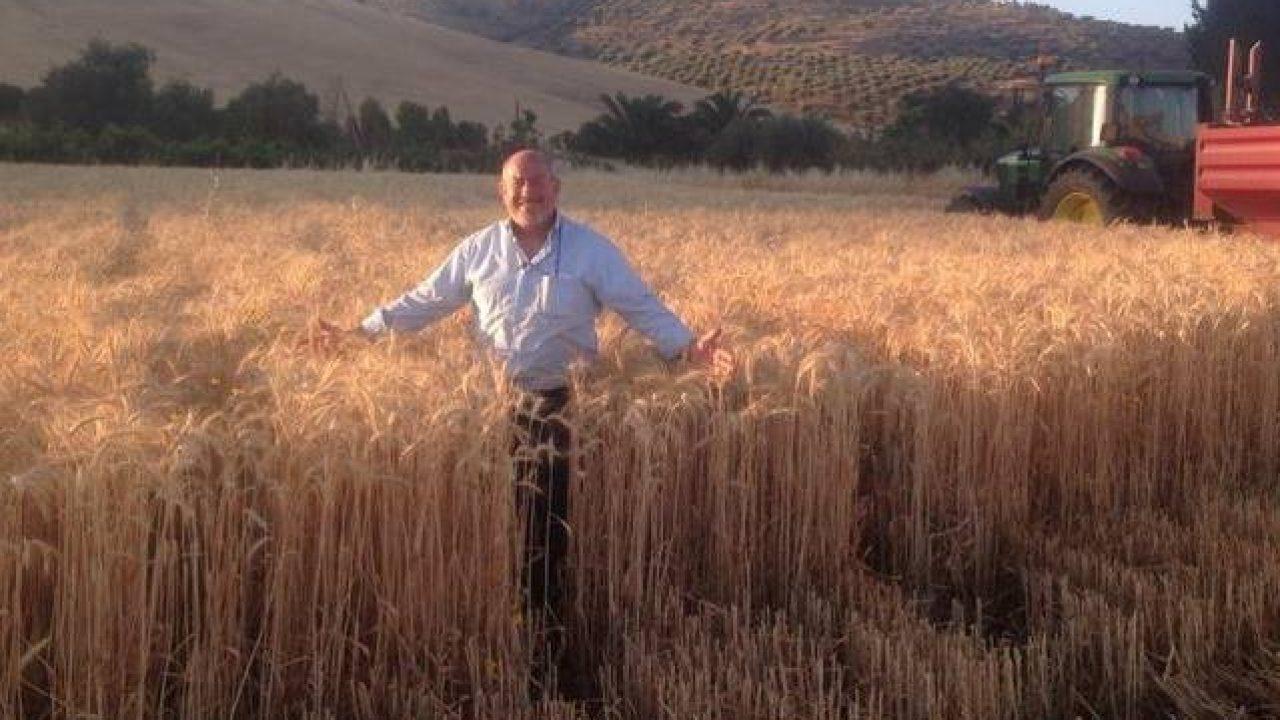 """Agostino Cascio: """"Ora tutti producono pasta con il grano italiano. E il grano delle navi che fine fa?"""" (VIDEO)"""