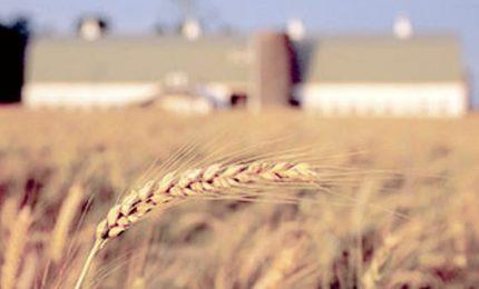 La CUN al servizio degli agricoltori e non per i professionisti dell'agricoltura