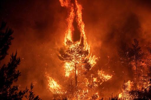 Palermo, altro incendio impressionante a monte Grifone (e solite lacrime di coccodrillo)